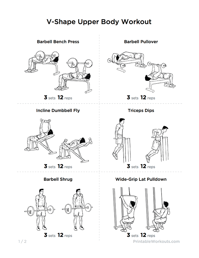 Shape Upper Body Workout Plan for Chest  Shoulders  amp  LatsUpper Back Workout Chart For Men