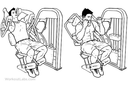 abs crunching machine