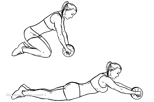 Afbeeldingsresultaat voor roll wheel exercise