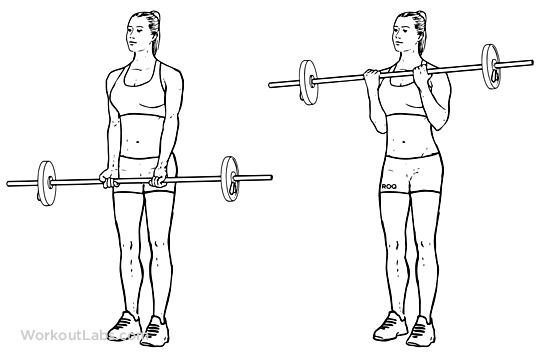 Barbell Curl / Standing Biceps Curl | Illustrated Exercise ...