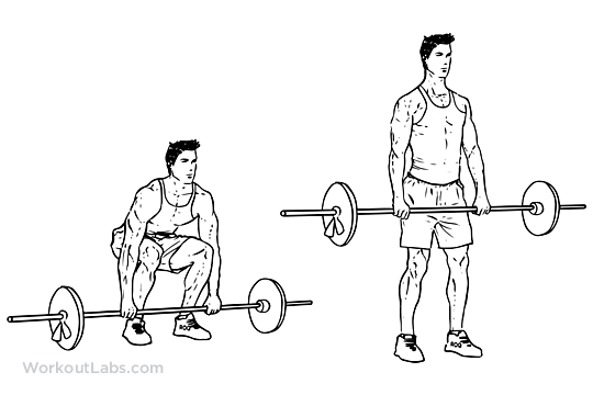 Barbell_Deadlift.png