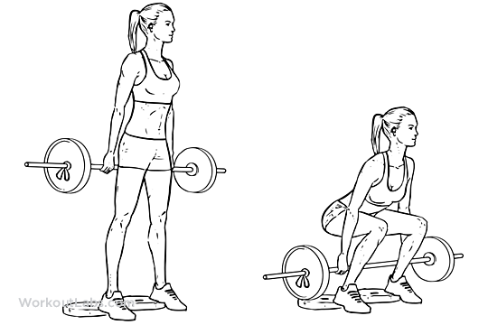 Barbell Hack Squat | Illustrated Exercise guide - WorkoutLabs