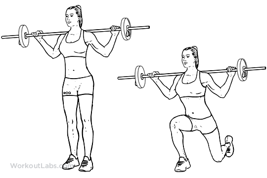 Barbell Lunge | Illustrated Exercise guide - WorkoutLabs
