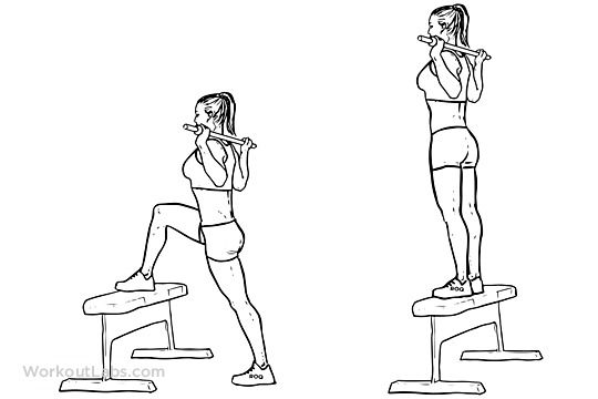 Barbell Step Up Illustrated Exercise Guide Workoutlabs