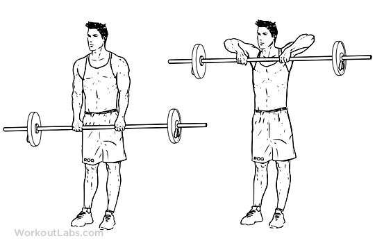 Upright Barbell Row Illustrated Exercise Guide Workoutlabs