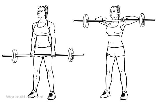 search results for  u201cbarbell workout printable u201d  u2013 calendar 2015