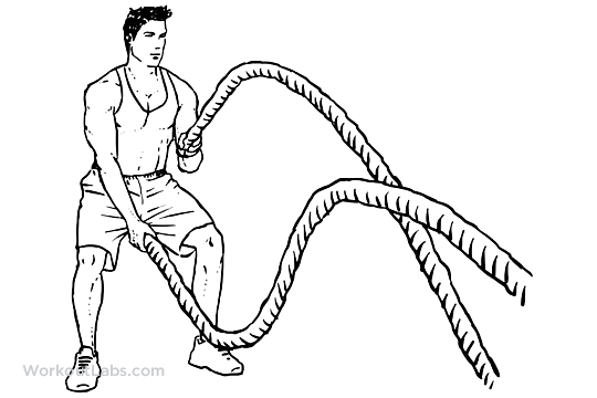 Battle Rope Snakes Illustrated Exercise Guide Workoutlabs