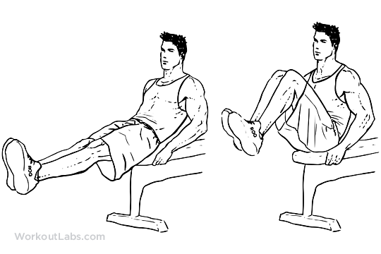 Image result for knee ups on bench