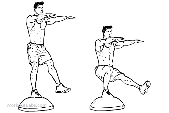 Bosu Ball Single Leg Pistol Squats Workoutlabs