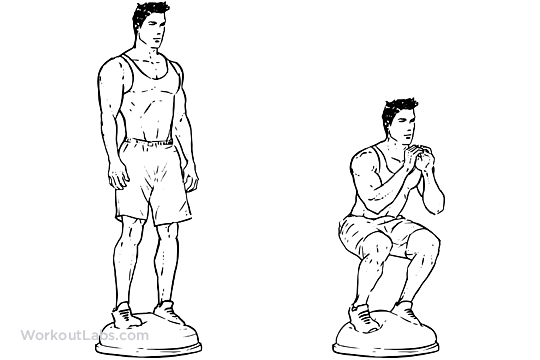 Bosu Ball Squat | Illustrated Exercise guide - WorkoutLabs