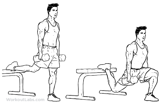 Bulgarian Split Squat Illustrated Exercise Guide