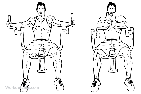 seated machine fly