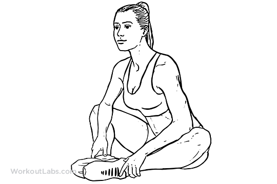 Butterfly Stretch | Illustrated Exercise guide - WorkoutLabs