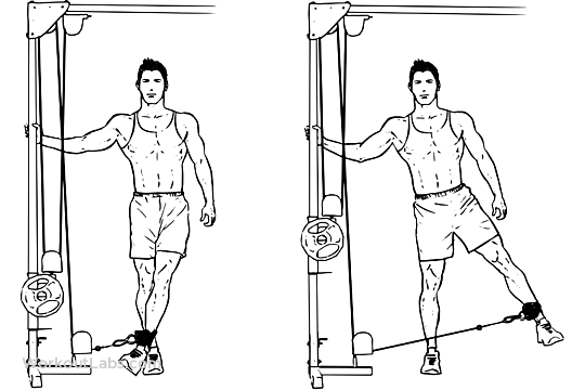 Cable Hip Abduction | Illustrated Exercise guide - WorkoutLabs