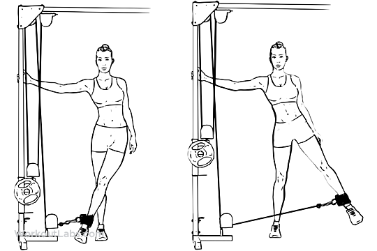 Cable Hip Abduction / Adduction | WorkoutLabs
