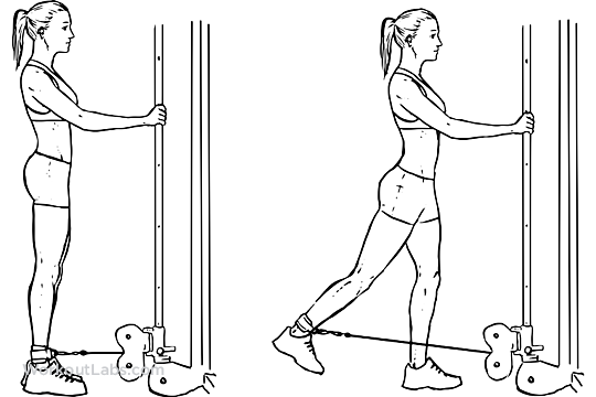 Cable Hip Extension Illustrated Exercise Guide Workoutlabs