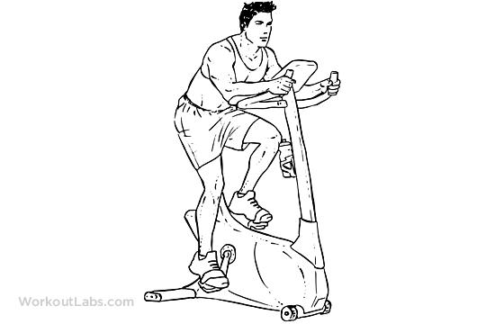 Cardio – Stationary Bike   Illustrated Exercise guide ...