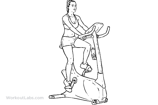 Stationary Bike Workouts To Increase Sd