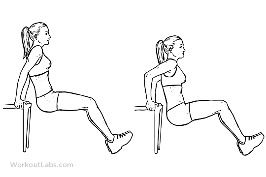 Chair Tricep Dips Illustrated Exercise Guide Workoutlabs