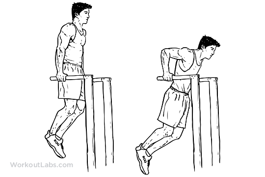 Triceps Dips   WorkoutLabs