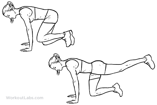 Donkey Kicks | Illustrated Exercise guide - WorkoutLabs