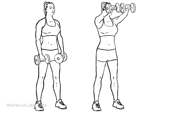 Dual / Two Arm Dumbbell Front Shoulder Raises | WorkoutLabs