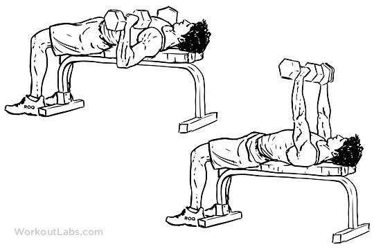dumbbell flat bench press