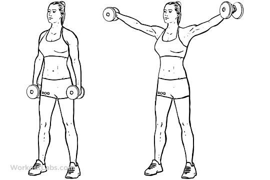 Dumbbell Lateral Raises / Power Partials | WorkoutLabs
