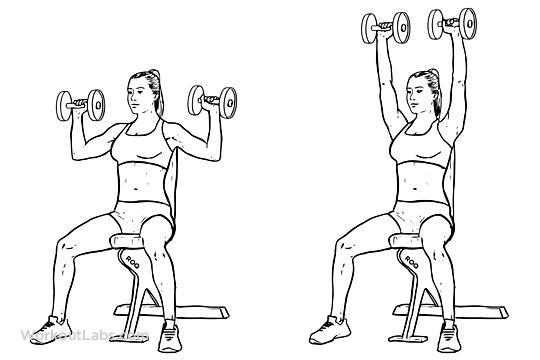 Dumbbell Overhead Shoulder Press | Illustrated Exercise guide ...