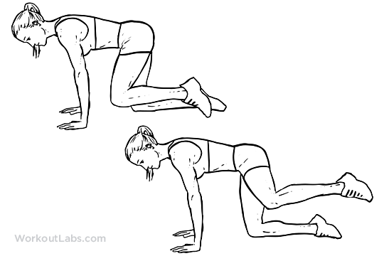 Fire Hydrants Abductor Knee Raise Illustrated Exercise