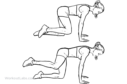 Fire Hydrants / Abductor / Adductor Knee Raises | WorkoutLabs