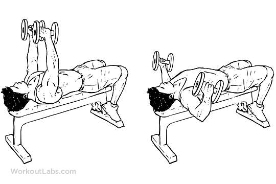 Flat Bench Dumbbell Fly | Illustrated Exercise guide ...