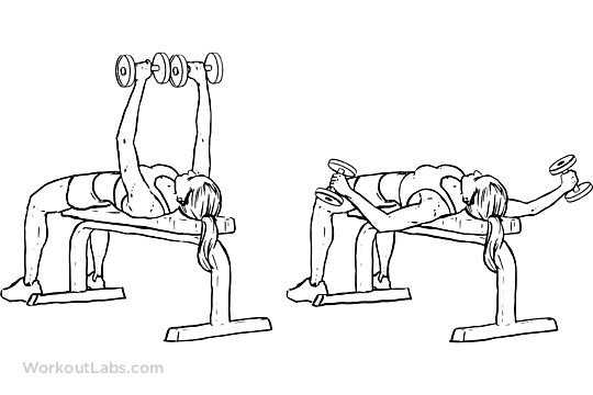 Flat Bench Dumbbell Flyes Workoutlabs