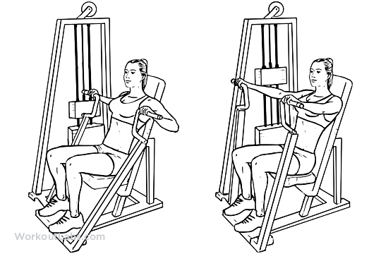 Hammer Strength Machine Seated Chest Press Workoutlabs