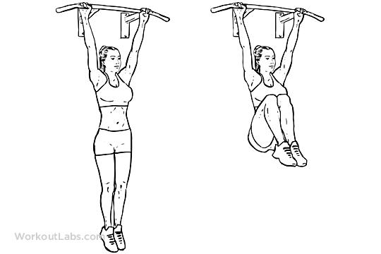 Hanging Knee Raises Workoutlabs