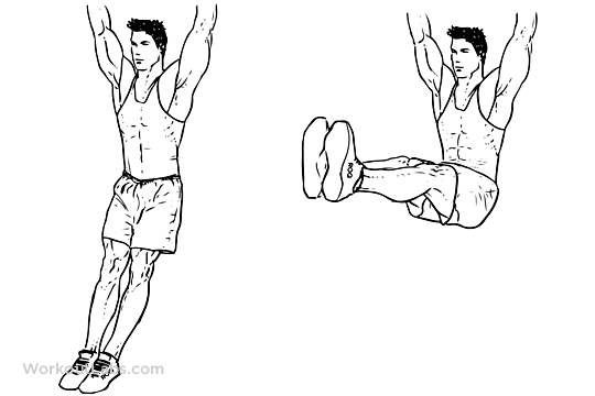Hanging Leg Raise | Illustrated Exercise guide - WorkoutLabs