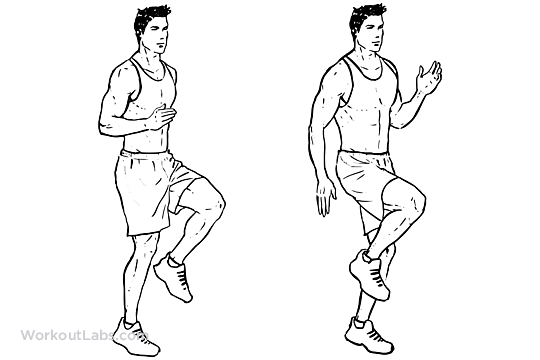 High Knees    Front Knee Lifts    Run On The Spot