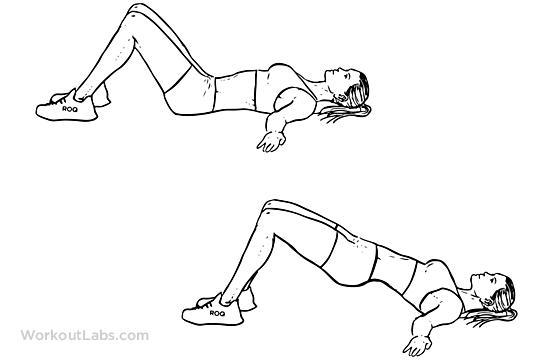 Hip Raise / Butt Lift / Bridge | Illustrated Exercise ...
