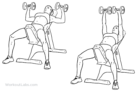return to exercise guide incline dumbbell bench press primary muscle    Incline Dumbbell Press