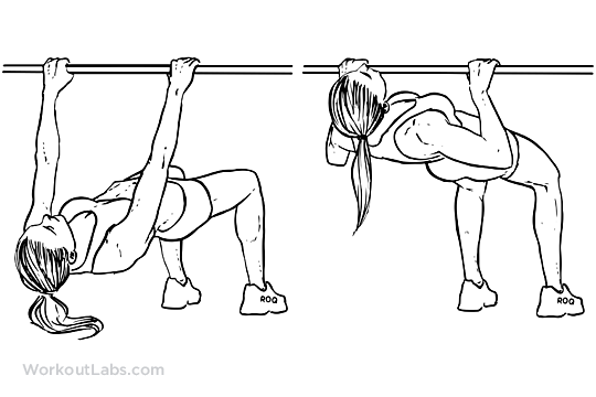 Inverted Rows inverted rows / reverse pull-ups workoutlabs