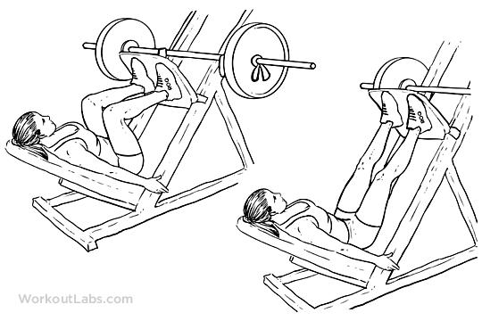 Leg Press Machine Squat Press Workoutlabs
