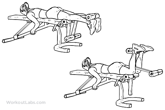 Lying Leg Curls | Illustrated Exercise guide - WorkoutLabs