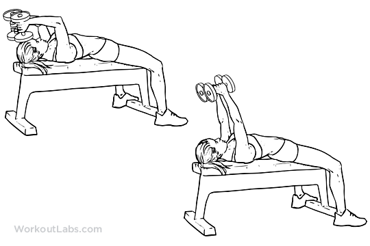 Lying Dumbbell Tricep Extension | Illustrated Exercise ...