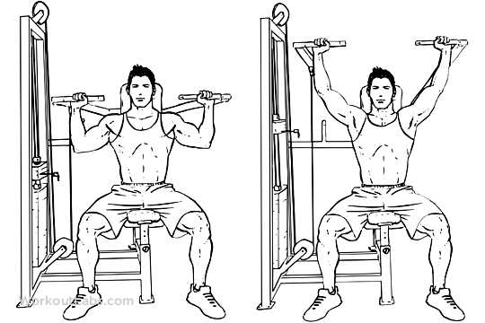 seated press machine