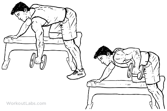 Single One Arm Dumbbell Bench Rows Workoutlabs