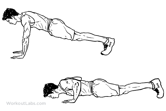 Push-up | Illustrated Exercise guide - WorkoutLabs