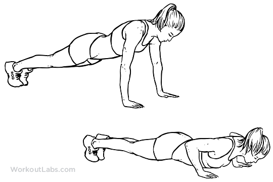 Push Up Illustrated Exercise Guide Workoutlabs