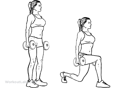 reverse lunges vs forward lunges