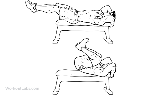 Reverse Bench Crunch Illustrated Exercise Guide