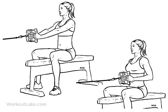 12週間で体脂肪12%減!筋肉5%増!を目指す「女性向け」筋肉トレーニングの実践例